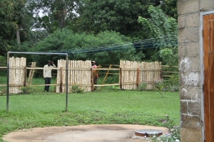 The vertical bamboo starts going up, which really make it a privacy fence that will keep animals and kids in.