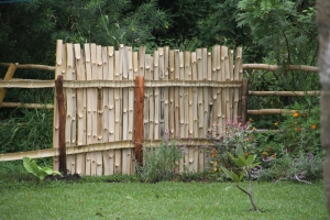 A closer image of what the inside of the fence looks like. The horizontal bamboo rails are nailed to the posts and the vertical bamboo is tied on using very thing strips of tire rubber (it's surprisingly strong and doesn't look bad either).