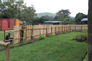 Working on the Eastern side of the Fence