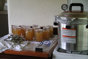 My canner with a small batch of bone broth next to it after coming out of the canner