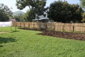 The garden progresses