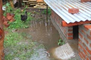 Standing water around the coop