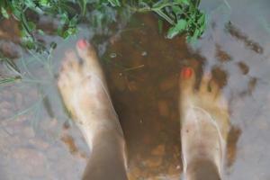 Wading anyone?
